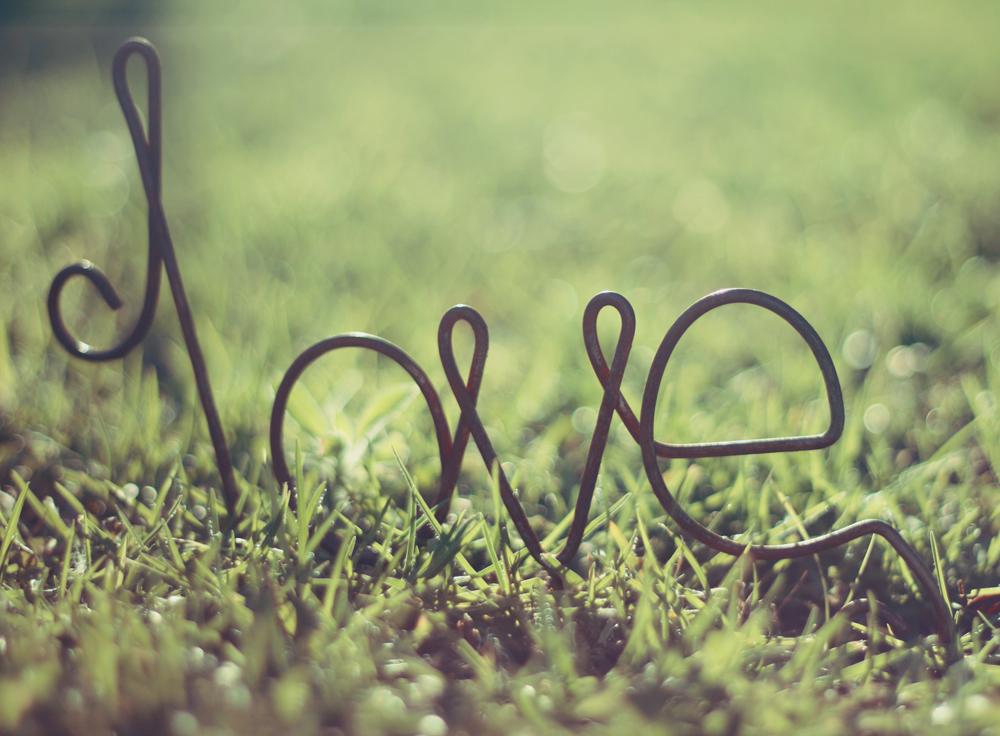 Konzumiraj život_ljubav i proleće